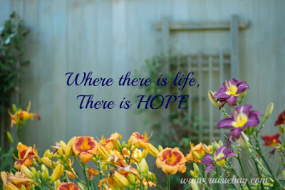 where there is life there is hope