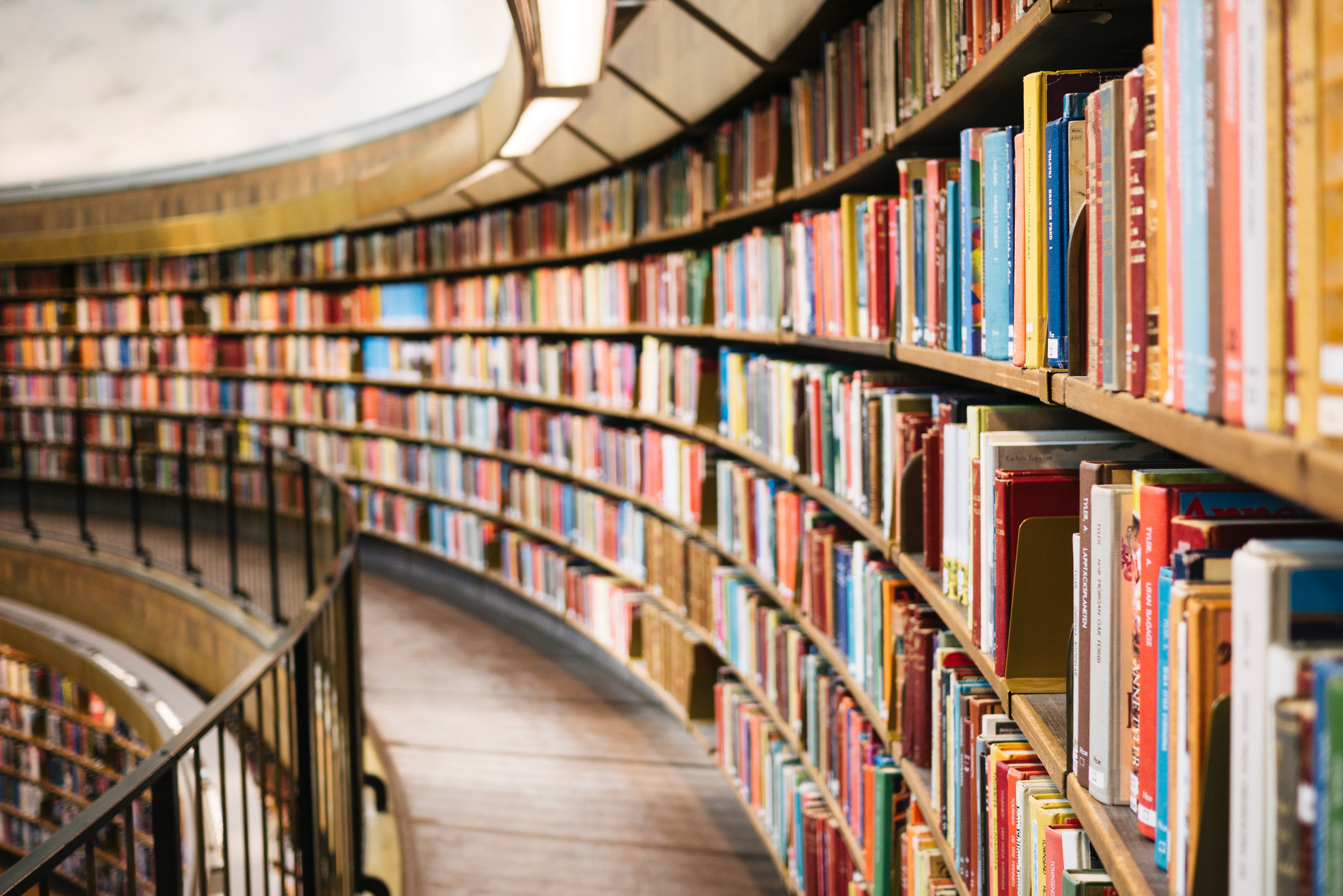 a library, rows and rows of books arcing to the left